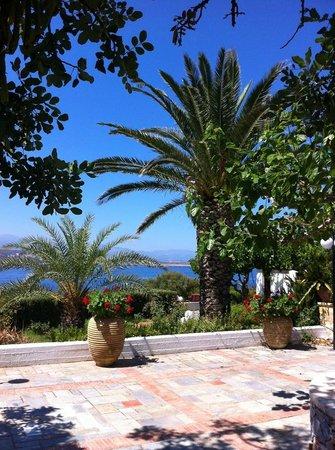Alianthos Suites: Main terrace with BBQ area