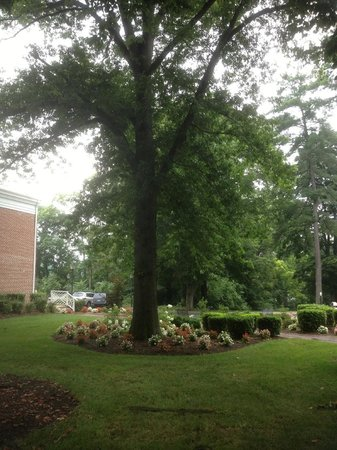 Hampton Inn Lexington - Historic District: Grounds