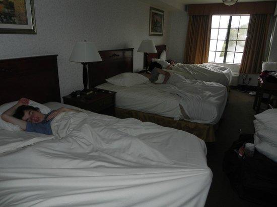 BEST WESTERN Airport Plaza Inn: Ar condicionado funciona bem. Estava um pouco frio na cidade.