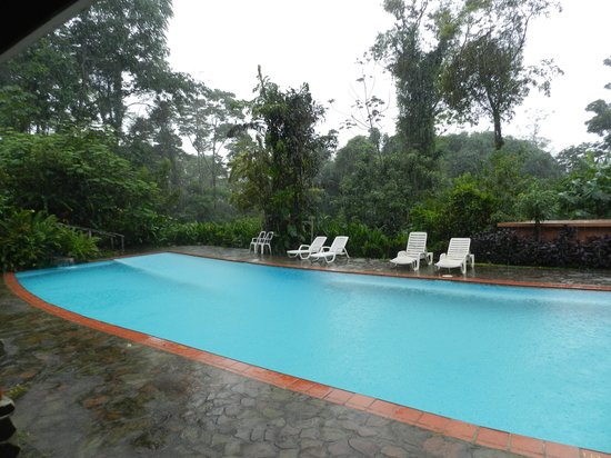 Finca Luna Nueva Lodge: The pool - they do not use chemicals in it!