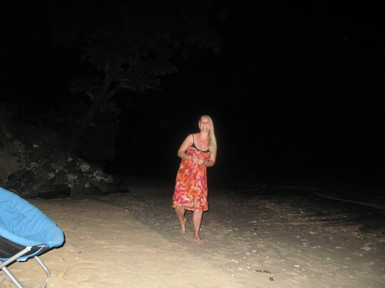 Tanu Beach Fales : Chasing those camouflage crabs