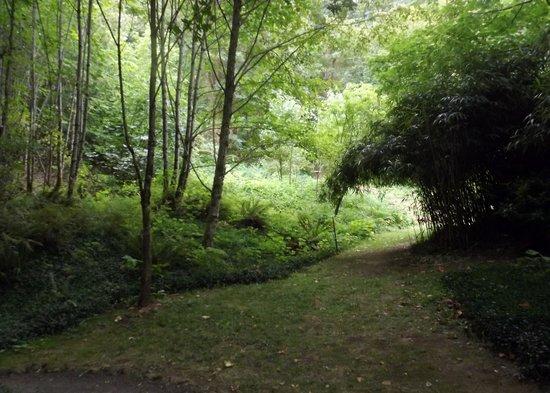 Bridal Veil Lodge: Walkway to Bridal Veil Falls