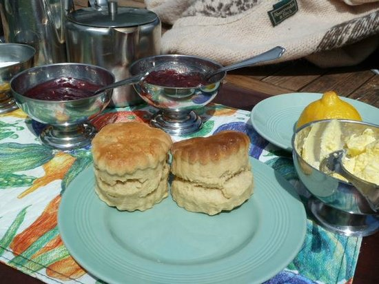 South Allington House: Homemade jam, clotted cream and fresh scones