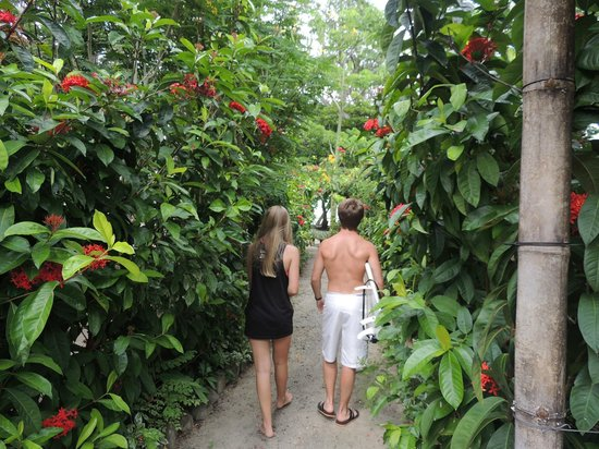 Villas Hermosas: Path To the Beach