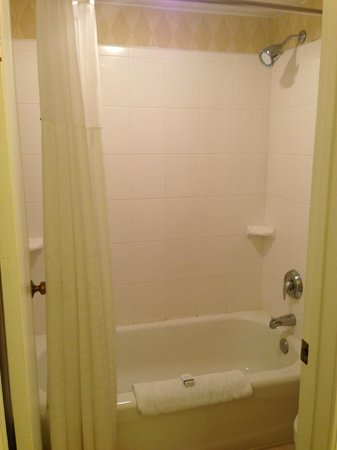 Hawthorn Suites by Wyndham Miamisburg/Dayton Mall South: Shower