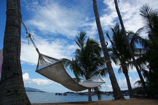 Secret Garden Beach Resort: Hammock on the beach