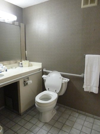 Best Western Grant Park Hotel: The bathroom
