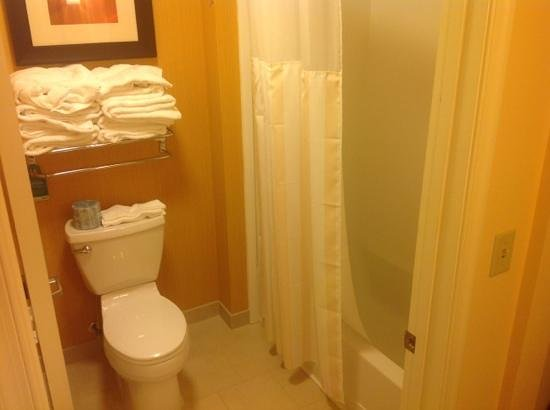 Homewood Suites by Hilton Carle Place - Garden City: bath and toliet