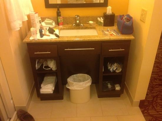 Homewood Suites by Hilton Carle Place - Garden City: storage under sink