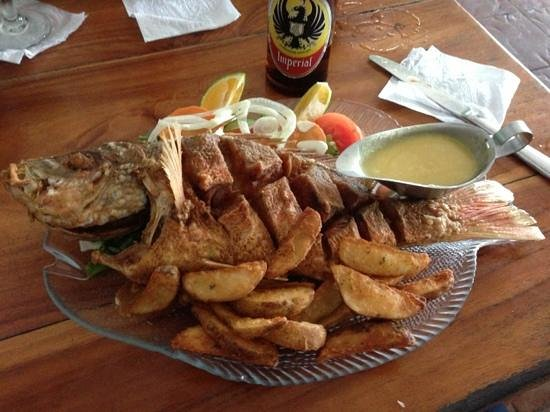 Marlin Restaurant : get the whole fried res snapper. dip into the Linasa Salsa on the table (nearbthe hot sauce). nu