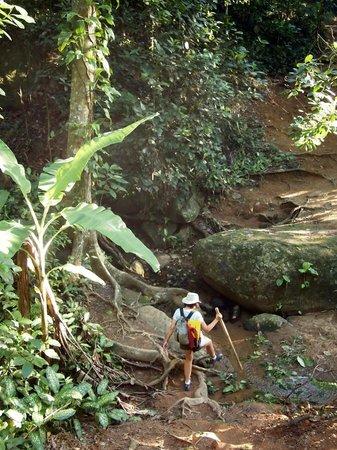 Vila Pedra Mar: Walking the trail near the hotel