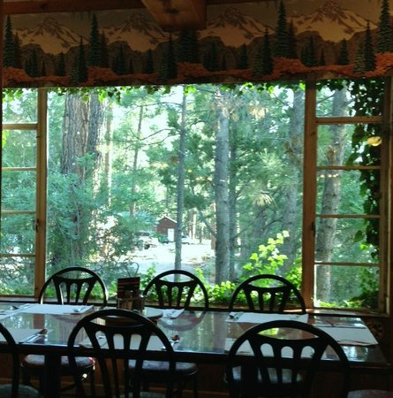 Jacob Lake Inn: Window View at the Restaurant
