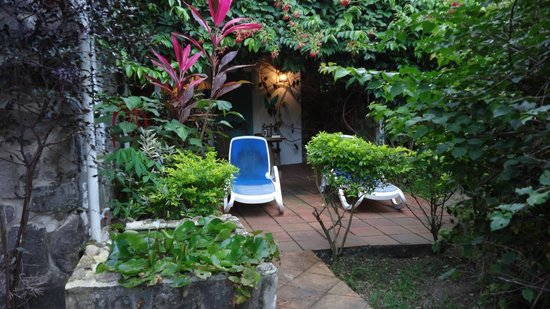 Mango Beach Inn: Patio outside the Green Fig and Sunshine rooms