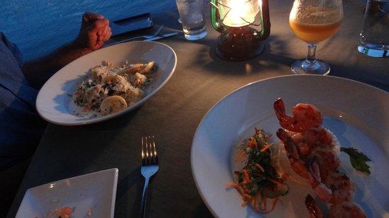 Mango Beach Inn: Dinner at the Rainforest Cafe