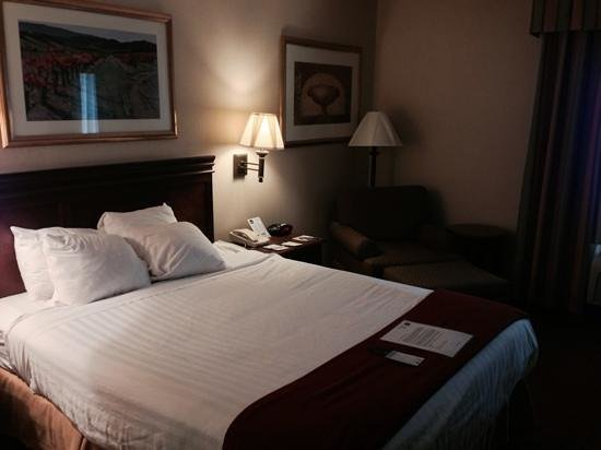 Best Western Oglesby Inn: Queen bed room on first floor