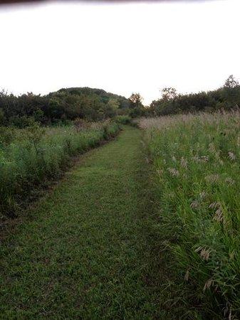 The Inn at Irish Hollow : Beautiful trail
