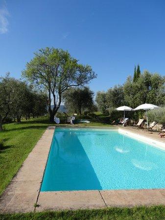 Relais Fattoria Valle in Panzano: The pool