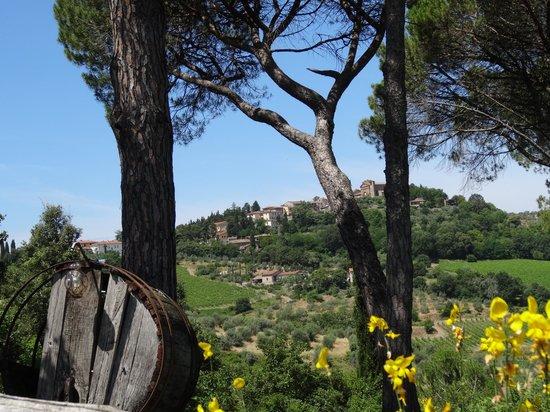 Relais Fattoria Valle in Panzano : Views nearby the hotel