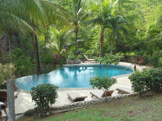 Sugar Beach Hotel: Infinity edge pool in the jungle