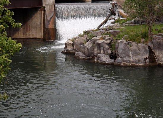 Residence Inn Idaho Falls: Just across from the hotel