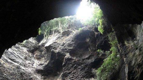 Gomantong Cave Sandakan: gomantong