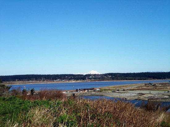 Fort Casey State Park: View from Fort Casey - March 31, 2013