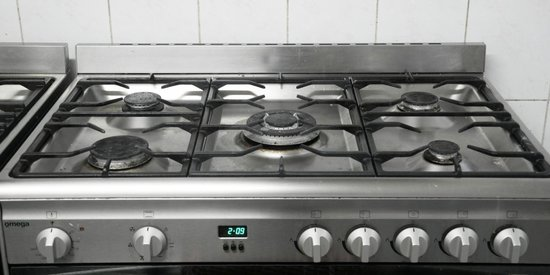 Gonow Family Backpacker: Stander commercial Kitchen (Gas Top)