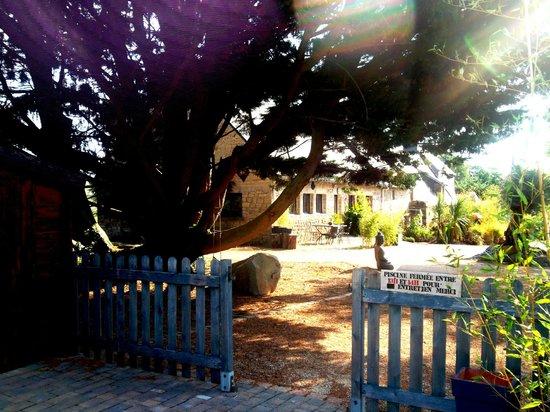 Le Domaine de Saint-Thomin : vue du coin piscine sur le jardin