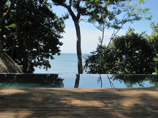 The Resort at Isla Palenque: View from Infinity Pool