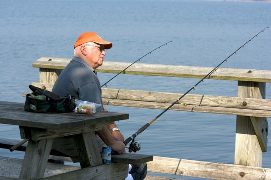 Fishing from shore picture of cayuga lake ithaca for Finger lakes fishing report