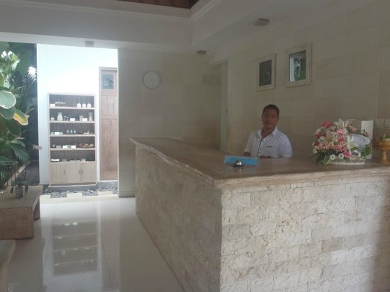 Artemis Villa and Hotel : reception desk