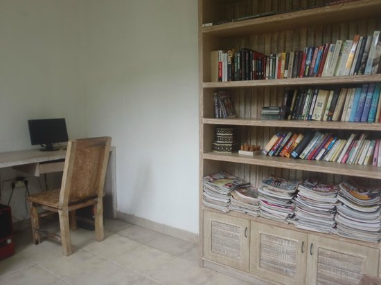 Artemis Villa and Hotel: library