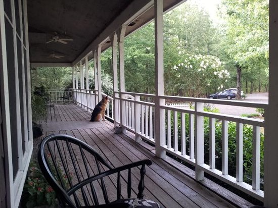Mountain Thyme Bed & Breakfast Inn : Dancer is waiting to greet you....