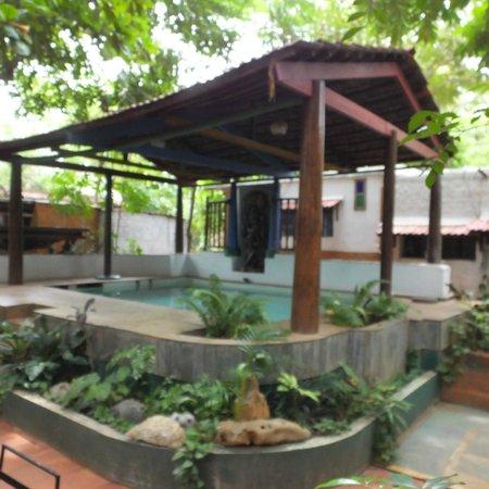 Sharnga Guesthouse: piscine