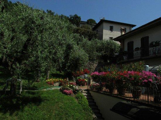 Hotel Fraderiana: Blick vom Zimmer in den Garten