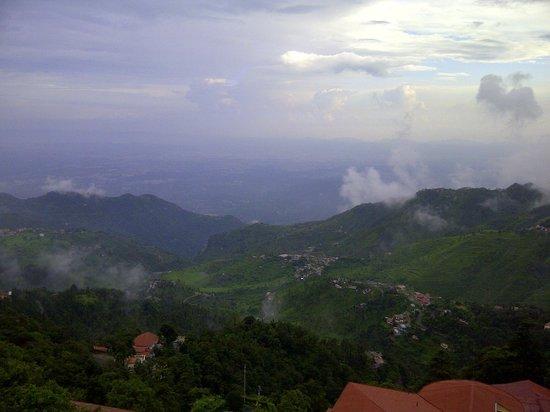 Pine Retreat: View of Dehradun