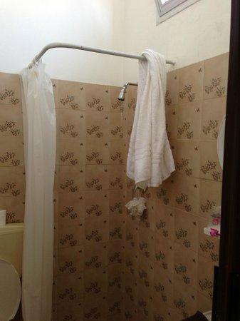 doccia nel bagno , puzza di muffa e aria chiusa! - Foto di Hotel ...