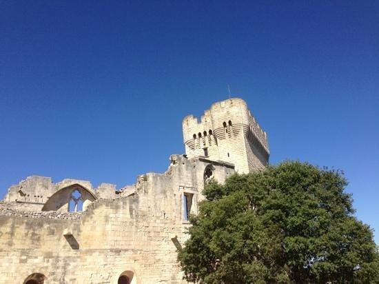 Abbaye de Montmajour : montmajour