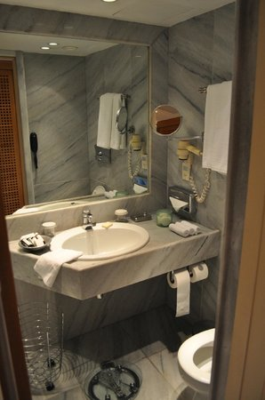 The Margi : Well stacked bathroom - but little space
