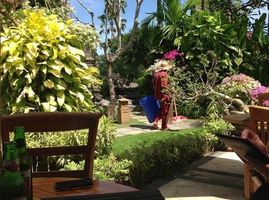 Parigata Villas Resort: villa grounds