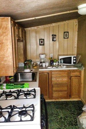 Green Village Cabins: Kitchen