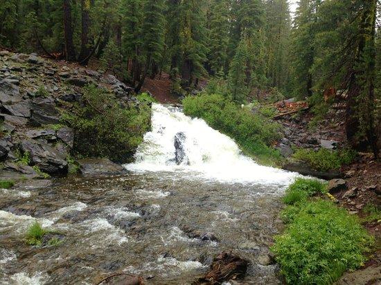 Kings Creek Falls: One of many Falls
