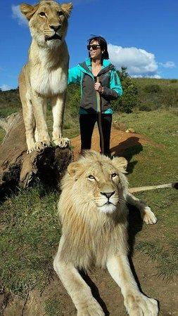 Zorgfontein Game Farm: Walk with Mufasa and Laila