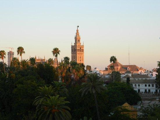 Hotel Alcazar : panorama