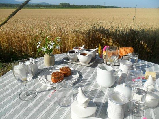 Hugo a la Campagne : Déjeuner raffiné à la campagne.