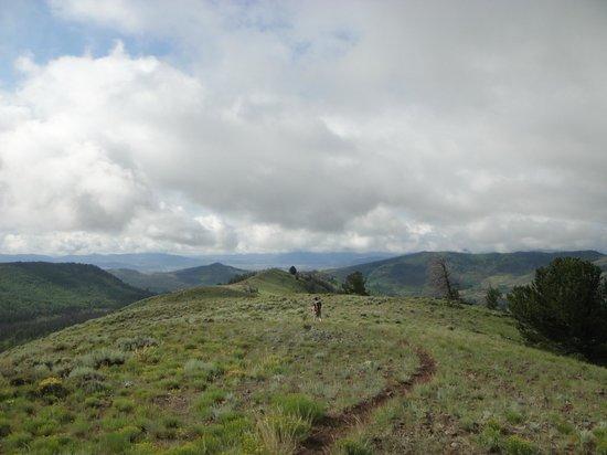 Spirit Mountain Ranch: Trail