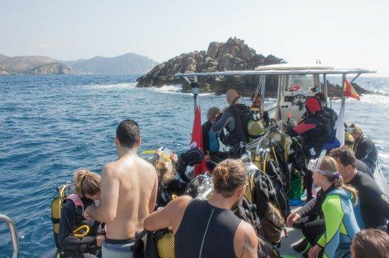 Scuba Ibiza Diving Center: Entering water
