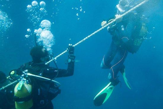 Scuba Ibiza Diving Center: Going down