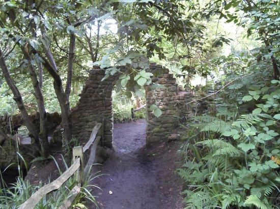 The Preston Bed & Breakfast: Inside Nine Springs Park