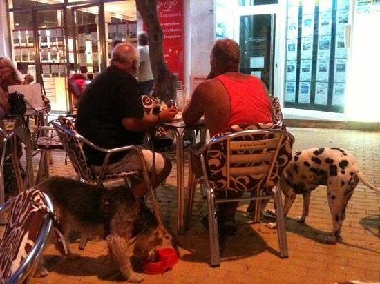 LIlly's Bar: Even the dogs are served tapas at Estampa!